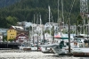 Morning at the Marina, Ketchikan, SE Alaska