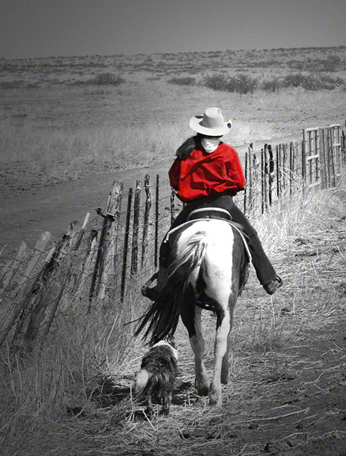 A Cowgirl\'s Best Friends BW