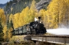 Durango Silverton Narrow Guage Railroad Fall Foliage