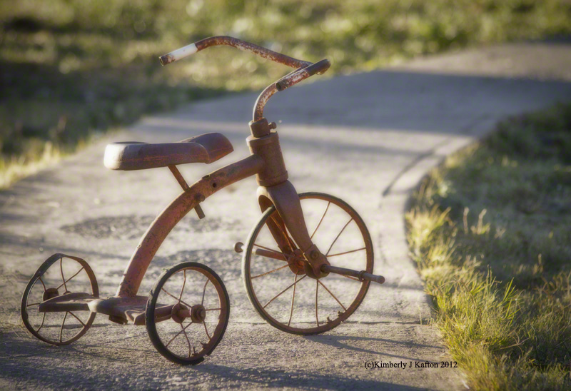 My Brother\'s Tricycle